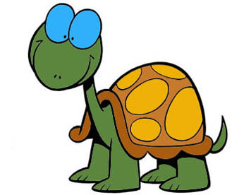 Acquaterrario per tartarughe d'acqua dolce
