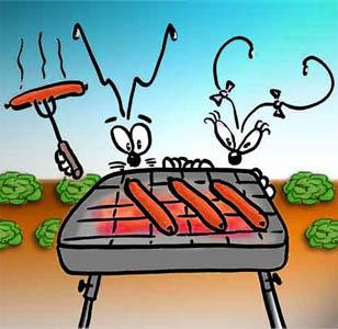 Scegliere il barbecue