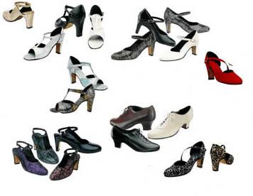 Siti web sulle scarpette per la danza e scarpe da ballo