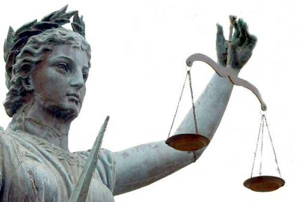 diventare avvocato