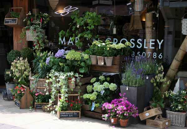 aprire un negozio di fiori - Idee Arredamento Negozio Fiori