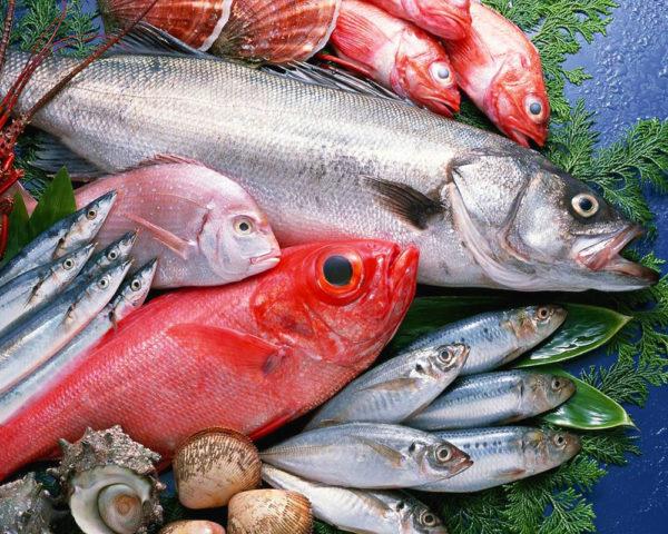 Il pesce fresco esiste davvero?