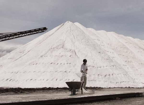 il sale fa male alla salute