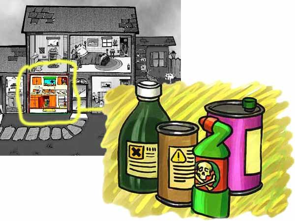 Veleni e sostanze pericolose in cucina