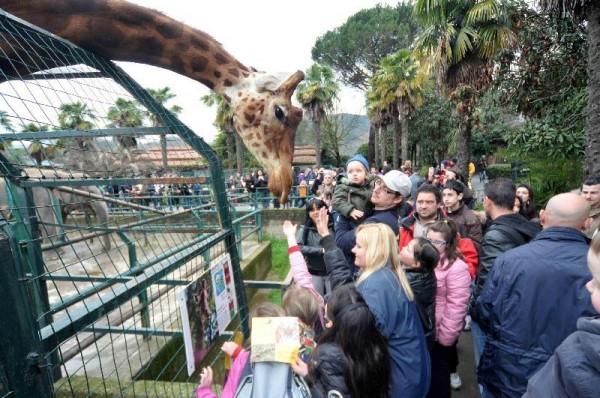 Zoo di Pistoia