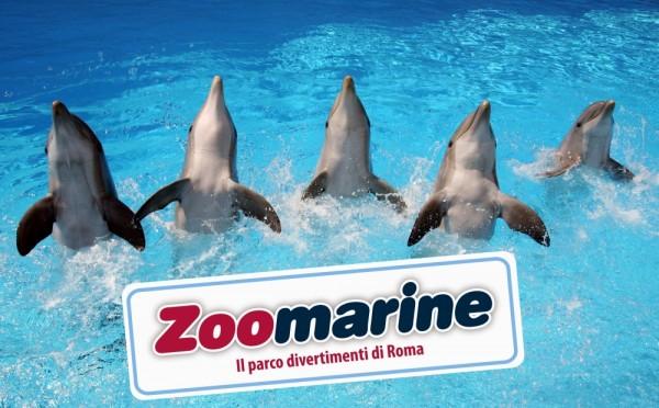 Che cos'è zoomarine?