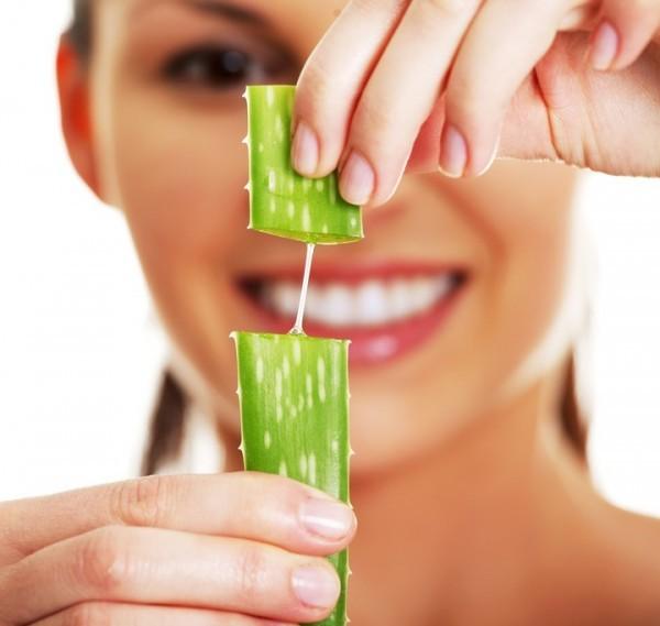 Come usare le foglie di aloe vera?
