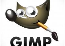 come usare gimp