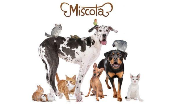 Miscota - Antiparassitari per animali