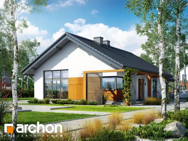 Domus green investire nelle case del futuro for Domus green
