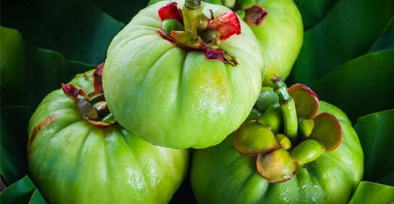 La Garcinia Cambogia ideale per combattere il sovrappeso