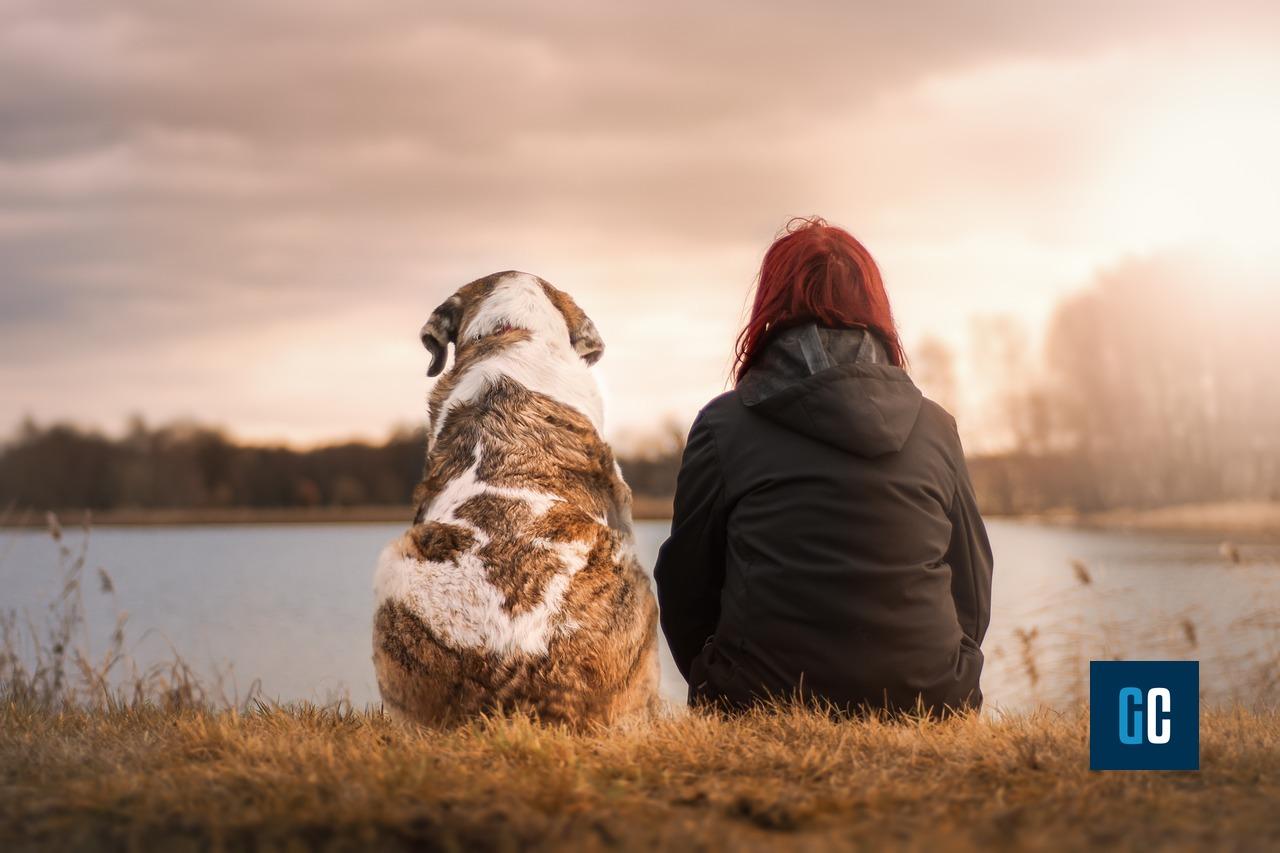 Il cane nella storia dell'uomo